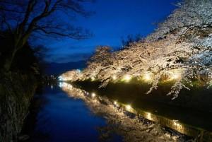 夜桜と松本城ー1