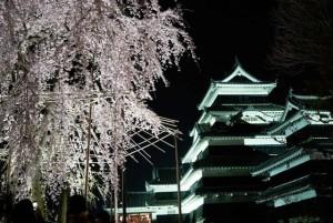 夜桜と松本城ー2